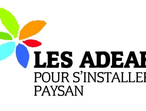 Évolution des collectivités territoriales et projets de développement local