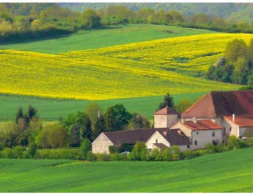 L'Attractivité des Territoires ruraux: chimère ou réalité?